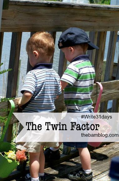 TheTwinFactor